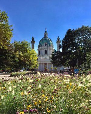 😍#feelslikesummer 🌿☀️🌿🌸 #strollingaround #karlsplatzwien #blumenwiese #september2021 #wienerkarlskirche #karlskirchewien #autumn #herbstzeit #weekendvibes #wien🇦🇹 #wienliebe ...
