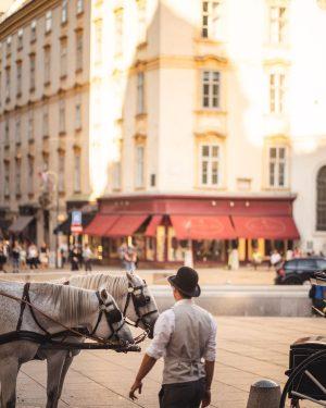 Even after 11 years Vienna still has some magic left for me 💫 #igersvienna #wien #viennaclassics #wienliebe...