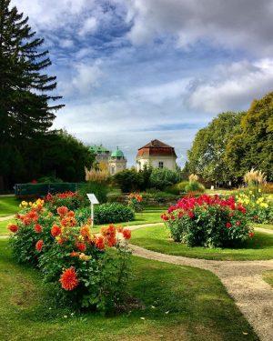 😍#autumnvibes 🌿🌸🌿🌼 #strollingaround #botanischergartenwien #schlossbelvedere #1030wien #october2021 #herbststimmung #10000schritte #herbstliebe #dahlien #dahlias #wien🇦🇹 ...